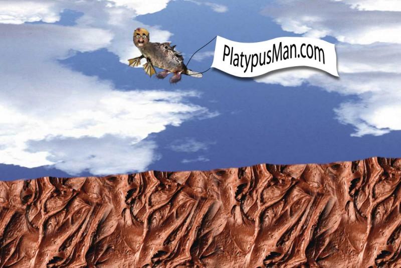 platypusman-flash-03-banner