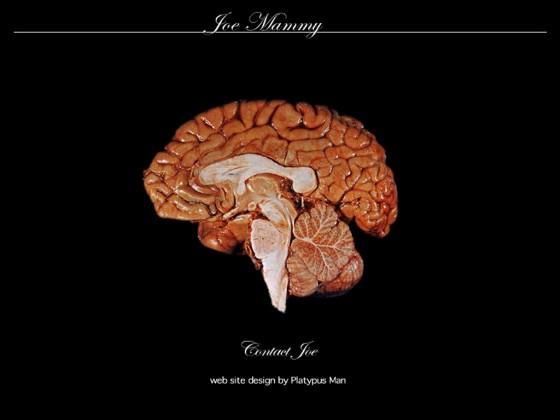 Joe Mammy