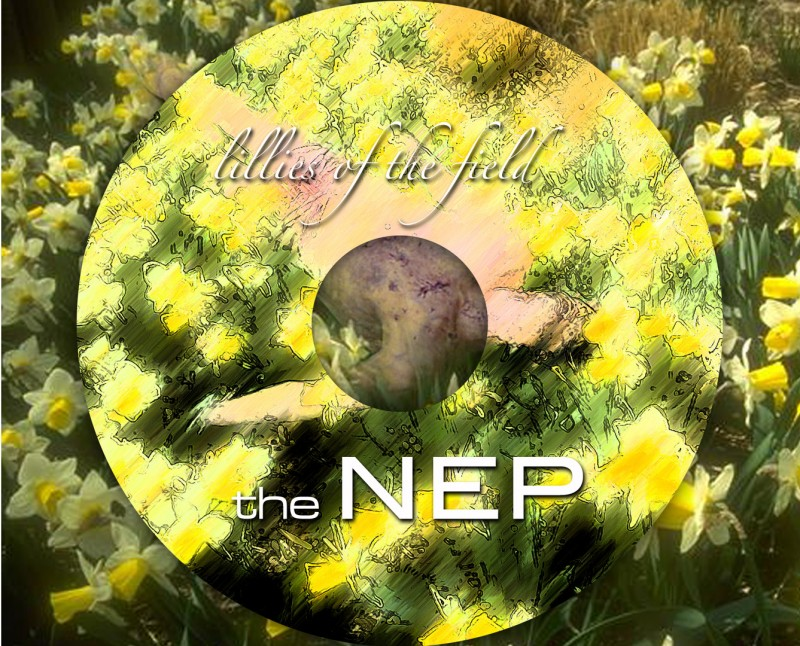 nep-lilies-of-the-field-cd-traycard-with-disc
